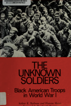 The Unknown Soldiers : Black American Troops in World War One