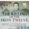 'The killing of the Iron 12': the execution of British soldiers in WW1