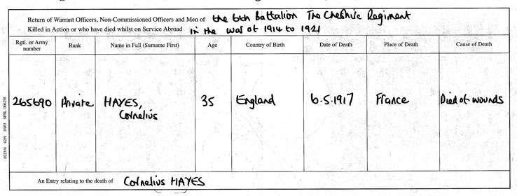 Figure 39. Death Certificate Cornelius Hayes (note incorrect age and place of death)