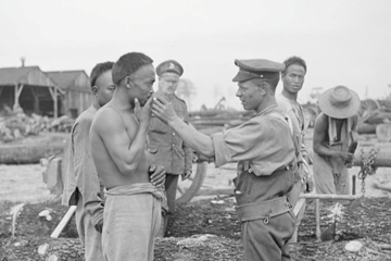 The Chinese Labour Force during the First World War